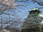 osaka-jyo-sakura