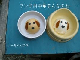 01.11犬山6