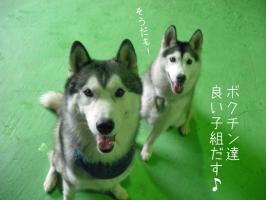 08.02愛ハス12