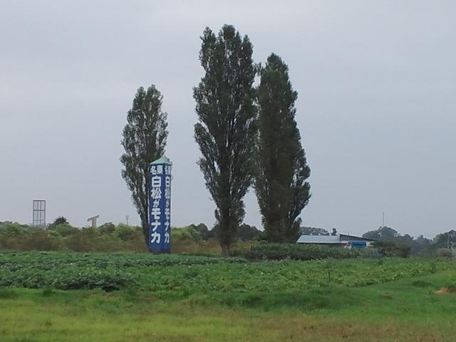 CA3J0058.jpg
