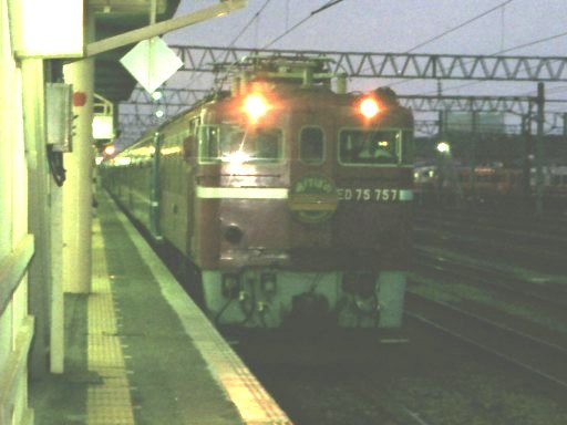 akebono1991-3.jpg