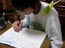 クーも勉強