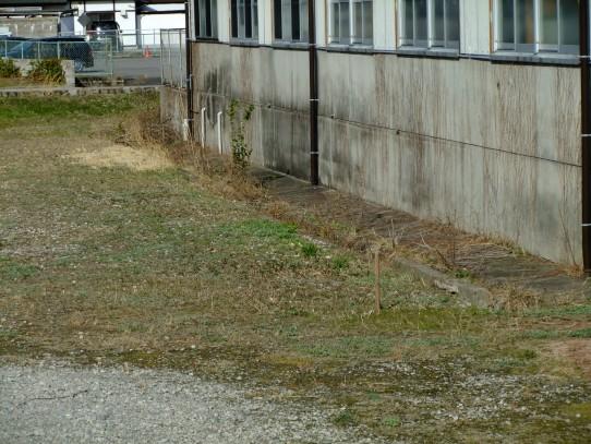 20110302-2.jpg