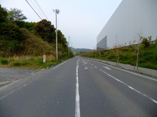 20110505.jpg
