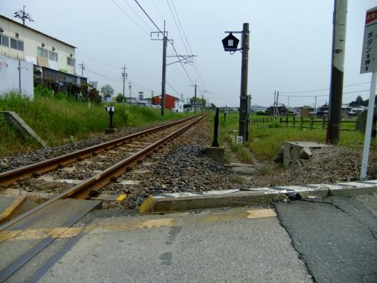20110517-2.jpg