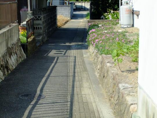 20110808.jpg