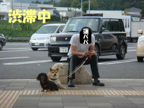 DSC03471ー編集