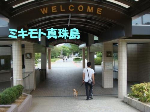 DSC03564ー編集