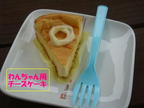 DSC03802ー編集