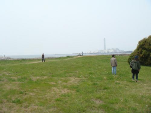 20100418-海ふれ 007