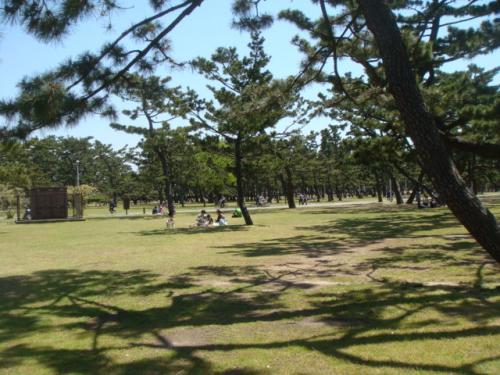 20100425-浜寺公園 004