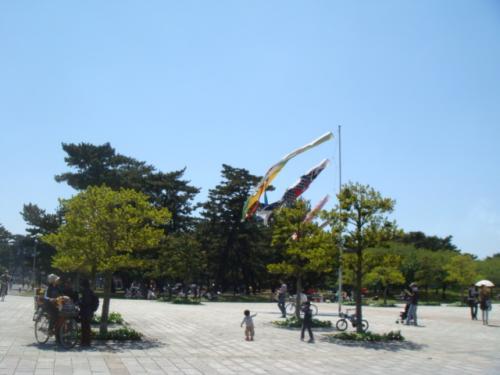 20100425-浜寺公園 005