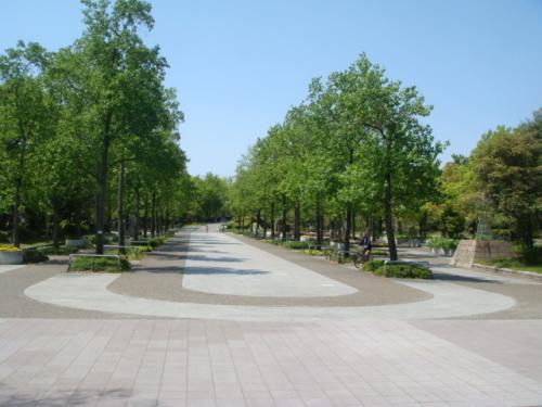 20100429-久宝寺緑地 013