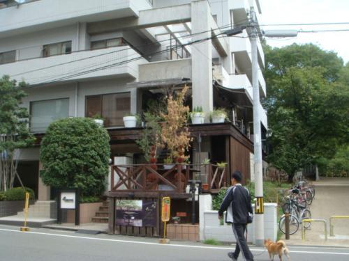 2010-日常( 047