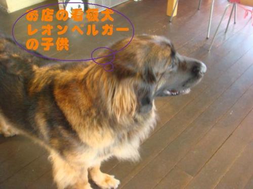 20101010‐琵琶湖旅行 027ー編集