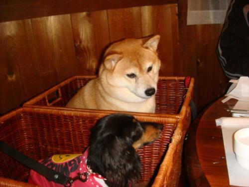 20101010‐琵琶湖旅行 086