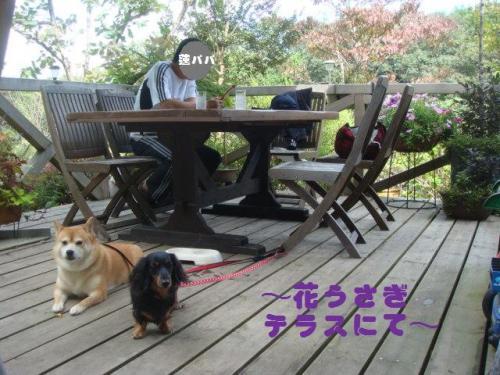 20101010‐琵琶湖旅行 131ー編集