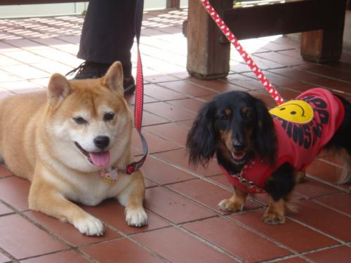 20101010‐琵琶湖旅行 121