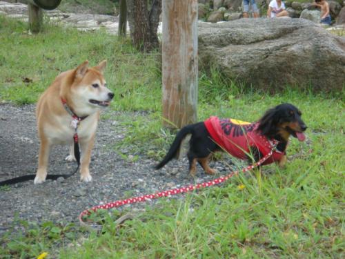 20101010‐琵琶湖旅行 111