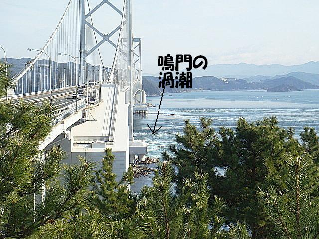 DSC05609(1)ー編集