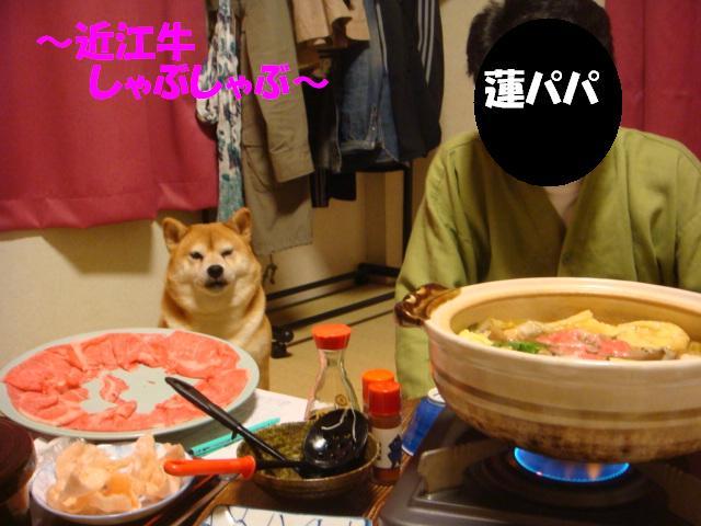 DSC05996ー編集