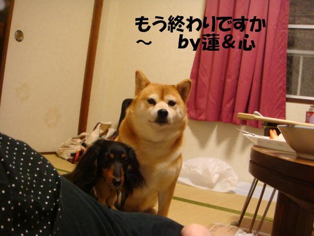 DSC06010-編集