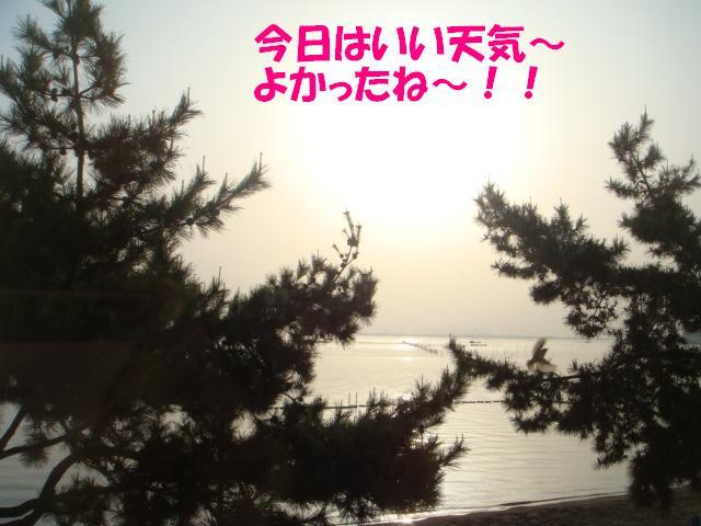 DSC06027-編集