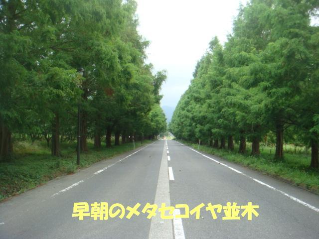 DSC06372ー編集