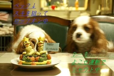 20100418 騒ぎ1