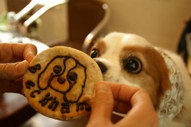20100424 似顔絵クッキー