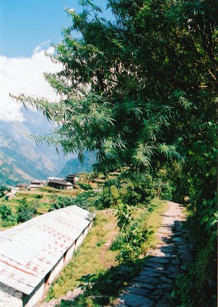nepal_ga.jpg