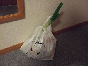 イオンで白菜鍋の具材を購入(長ネギ買うと買物っぽさUP!?)
