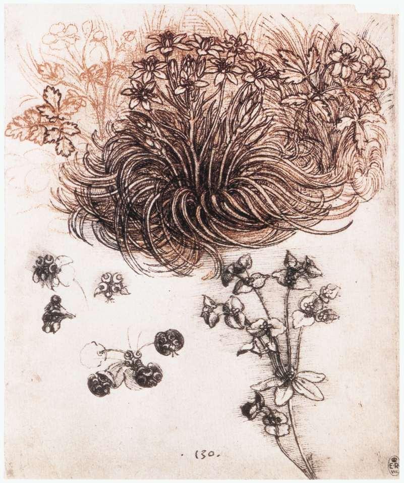 09plants.jpg