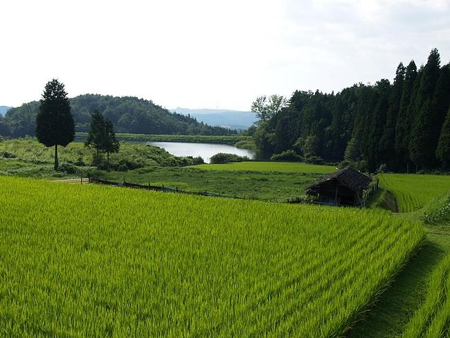 田園風景(岐阜)