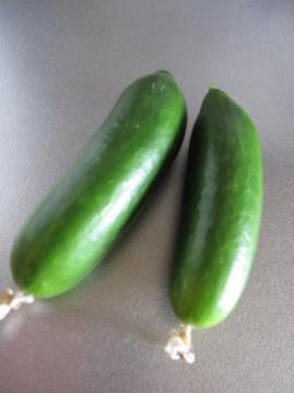cucumber5.jpg