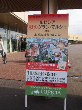 lupicia1.jpg