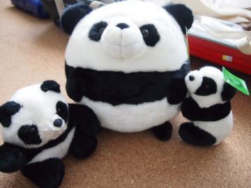 panda12.jpg