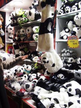 panda8.jpg
