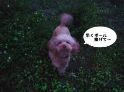 そら4 (6)