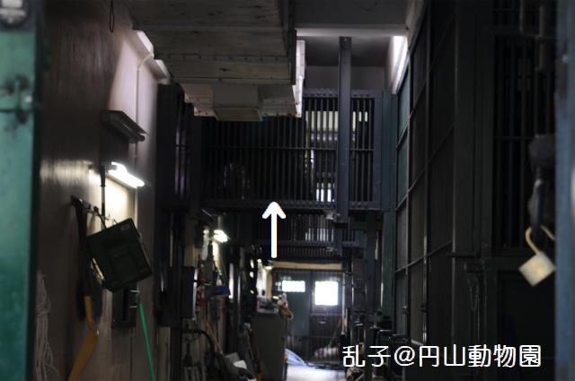 DSC_4963.jpg