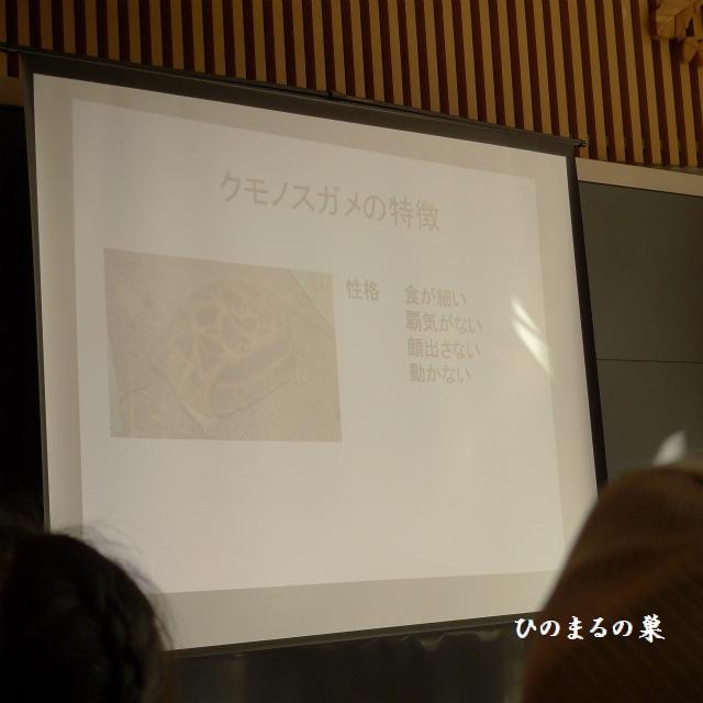 blog201009265.jpg