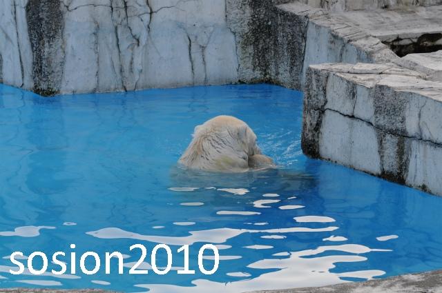 blog20101122010.jpg