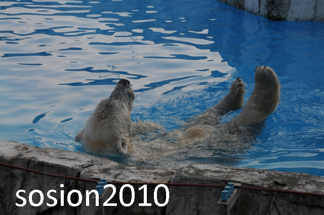blog20101122014.jpg