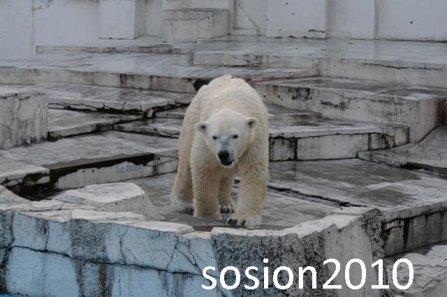 blog20101122020_20101122130415.jpg