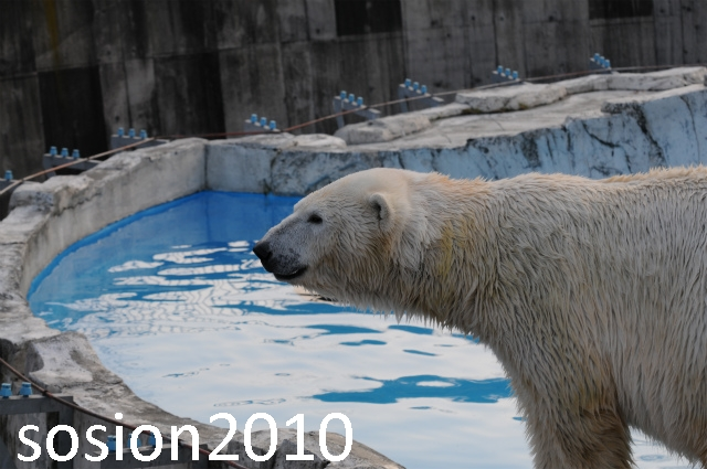 blog20101122024.jpg
