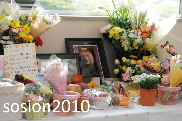 blog2010112204.jpg
