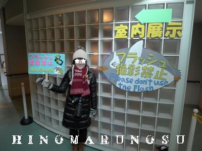 blog20101220y.jpg