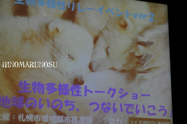 hinomarunosu0510201005.jpg