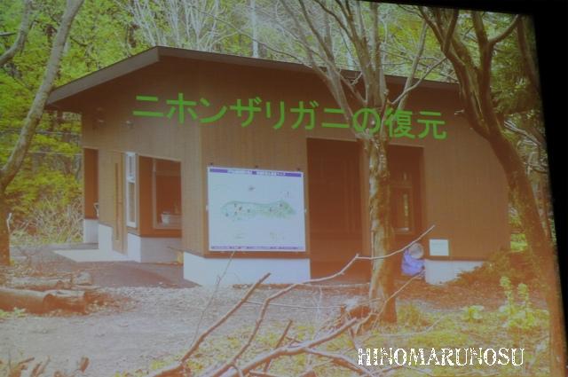 hinomarunosu0510201041.jpg