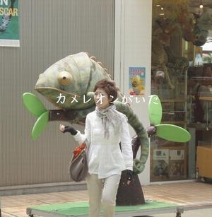 hinomarunosu2009061912_20100309132923.jpg